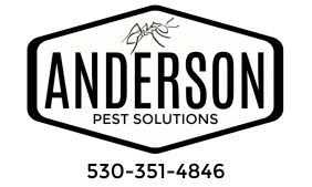 Anderson Pest Solutions